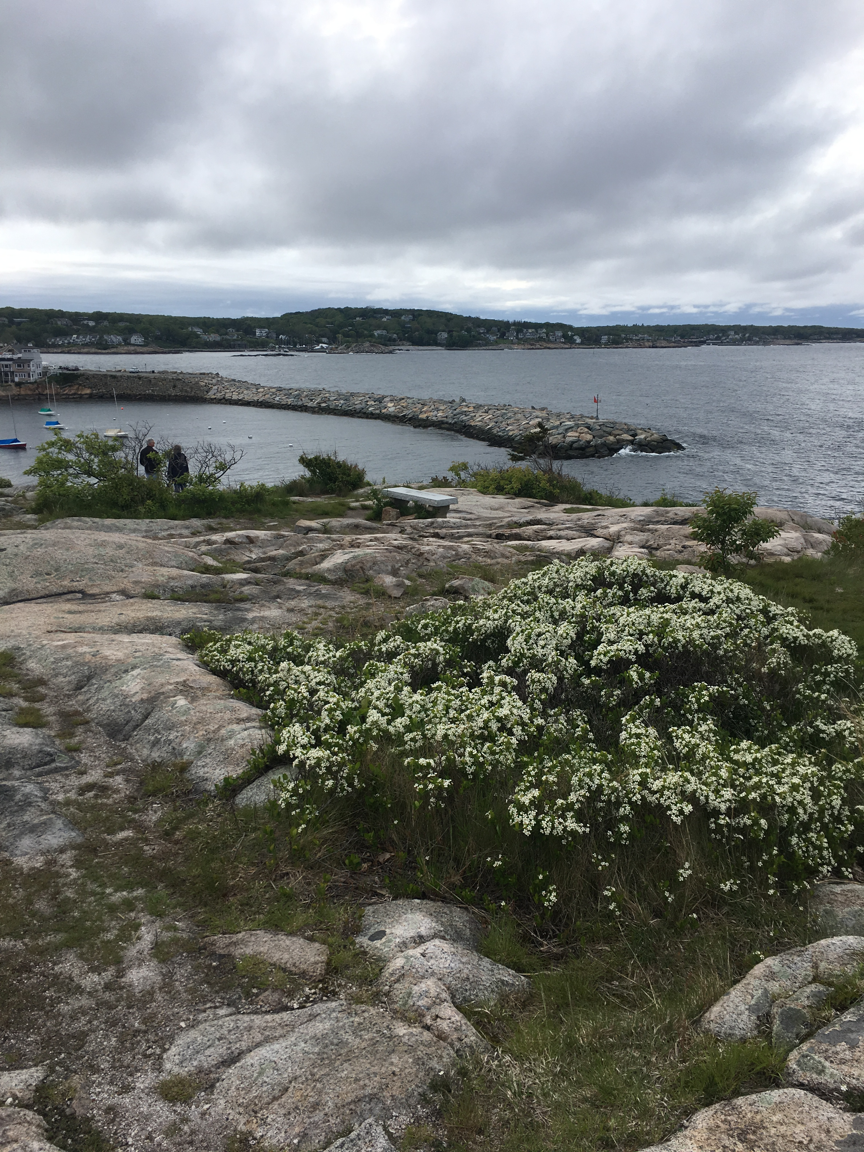 The Headlands, Rockport MA | Travel with Baby